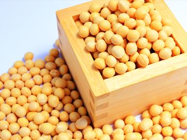 イソフラボン(大豆)の画像